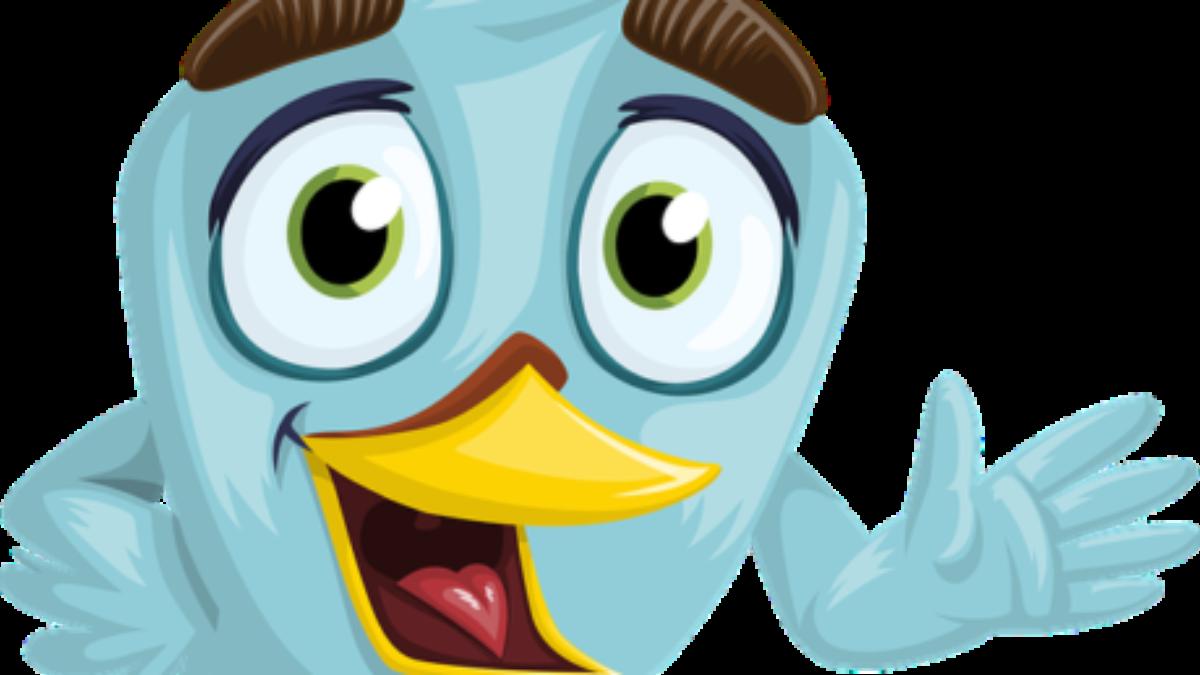 bird-1773631_640