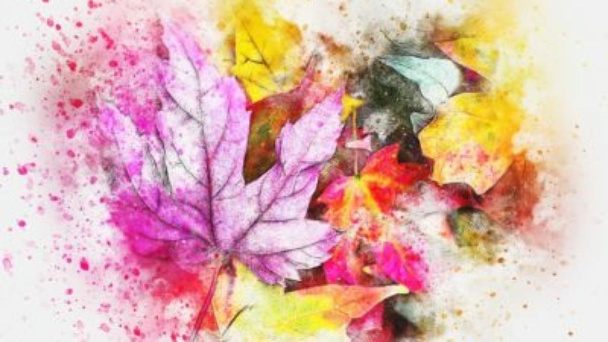 leaves-2630470_640