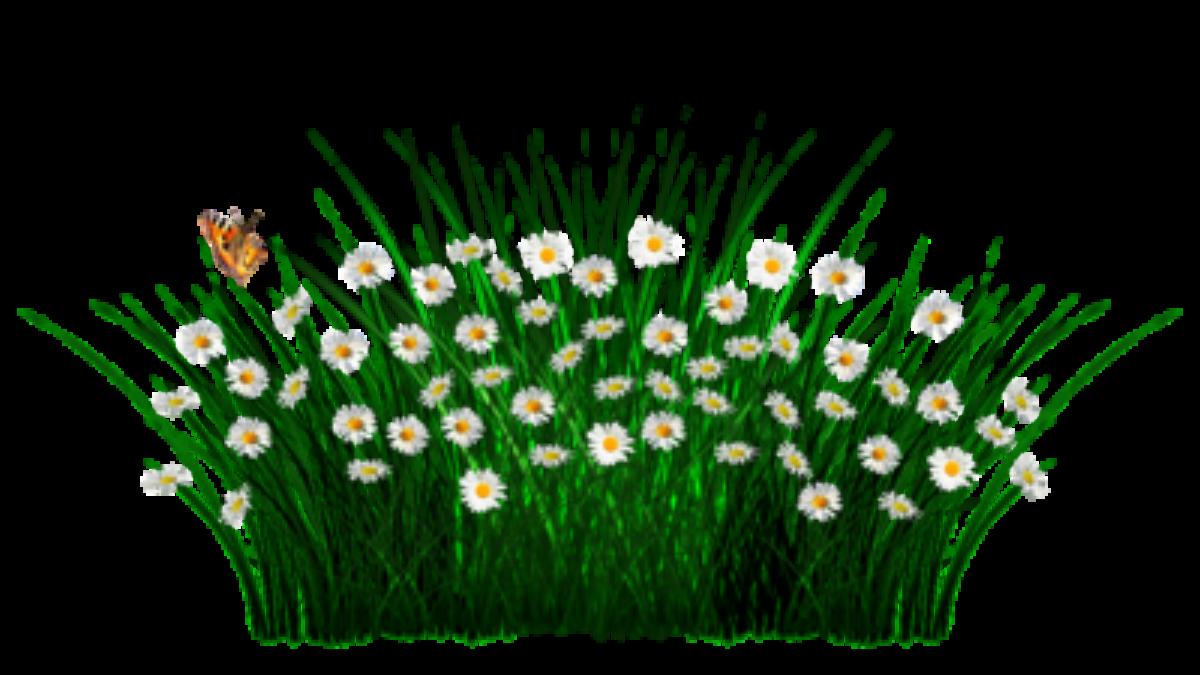 spring-1403613_640