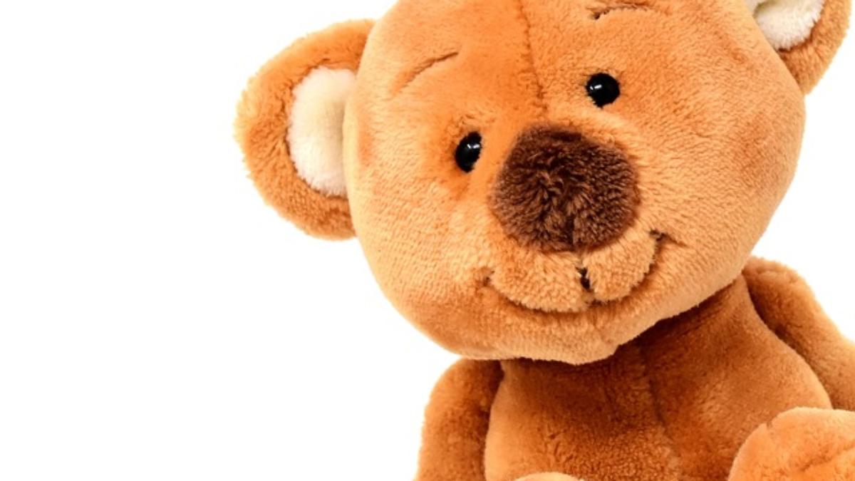 teddy-3404241_640