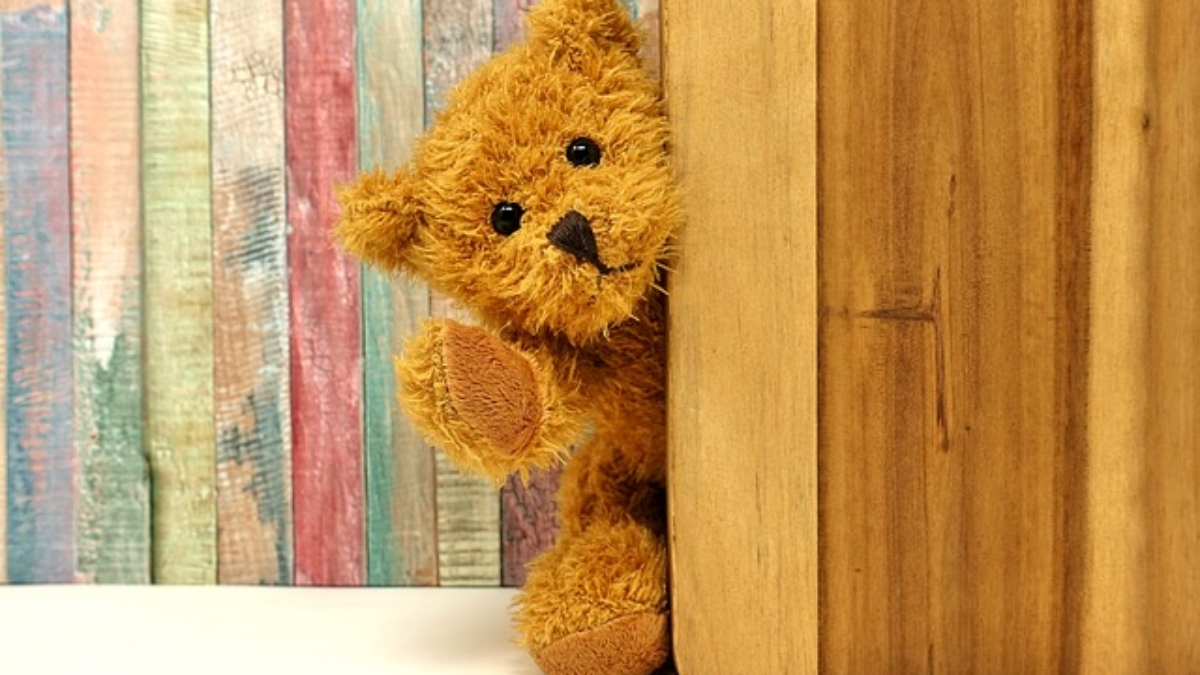 teddy-3405768_640